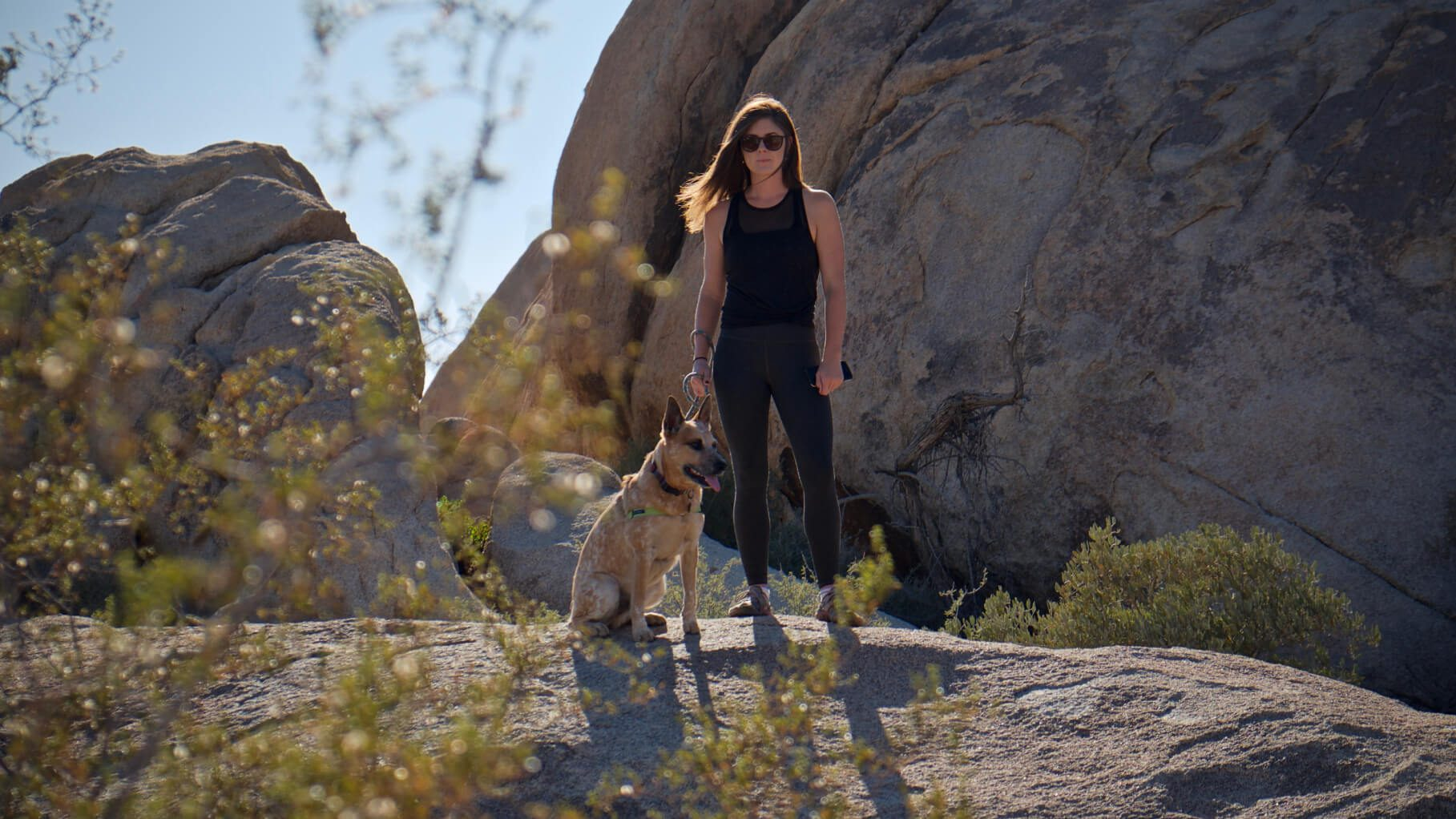 woman walking in the mountains with a dog