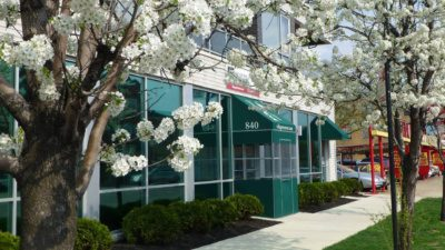 an independently-owned vet clinic in chicago village west veterinary feature
