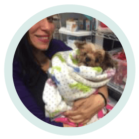 alicia diaz a veterinary technician holding a dog at village west veterinary in chicago