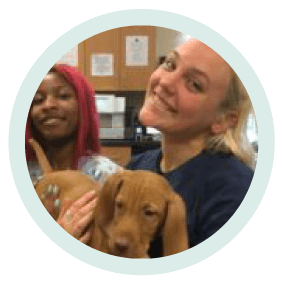 kelsee simons a veterinary assistant holding a dog at village west veterinary in chicago