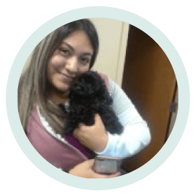 yolanda salazar veterinary assistant holding a dog at village west veterinary in chicago