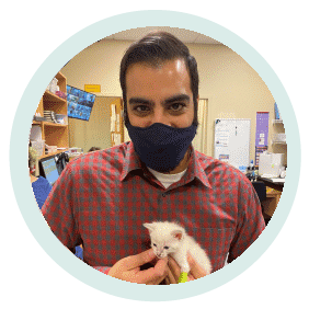 Amin Rajput hospital manager holding a cat at village west veterinary in chicago